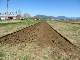 chilliwack plowing match 2016 055