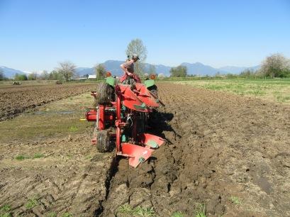 chilliwack plowing match 2016 121