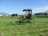 chilliwack plowing match 2016 185