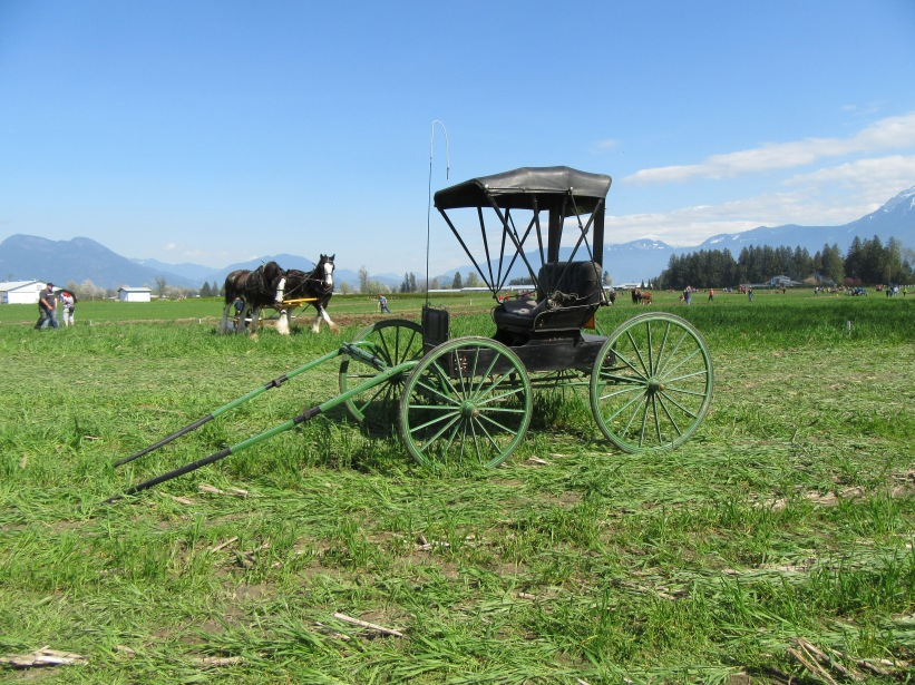 chilliwack plowing match 2016 185