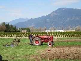 chilliwack plowing match 2016 197