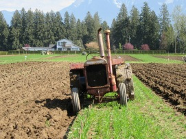 chilliwack plowing match 2016 198
