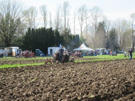 chilliwack plowing match 2016 230
