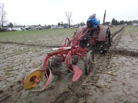 chilliwack plowing match 2017 009