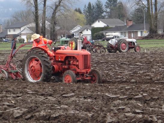 chilliwack plowing match 2017 069
