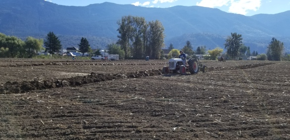 chilliwack plowing match 061