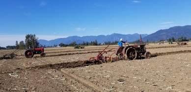 chilliwack plowing match 070