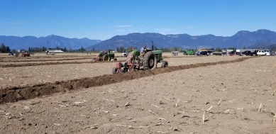chilliwack plowing match 072