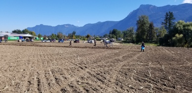 chilliwack plowing match 074