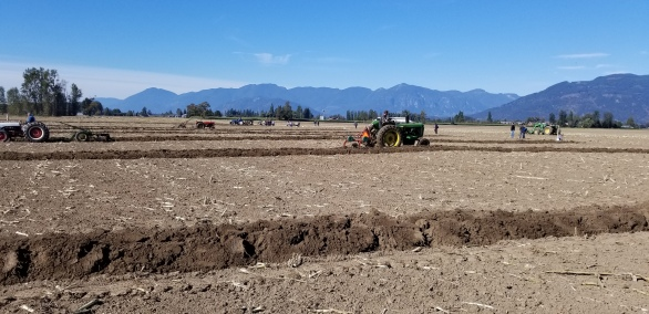 chilliwack plowing match 075