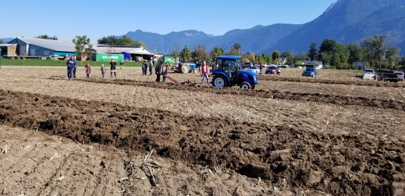 chilliwack plowing match 076