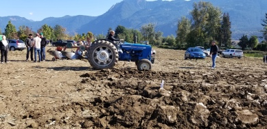 chilliwack plowing match 078