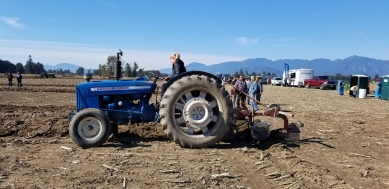 chilliwack plowing match 079