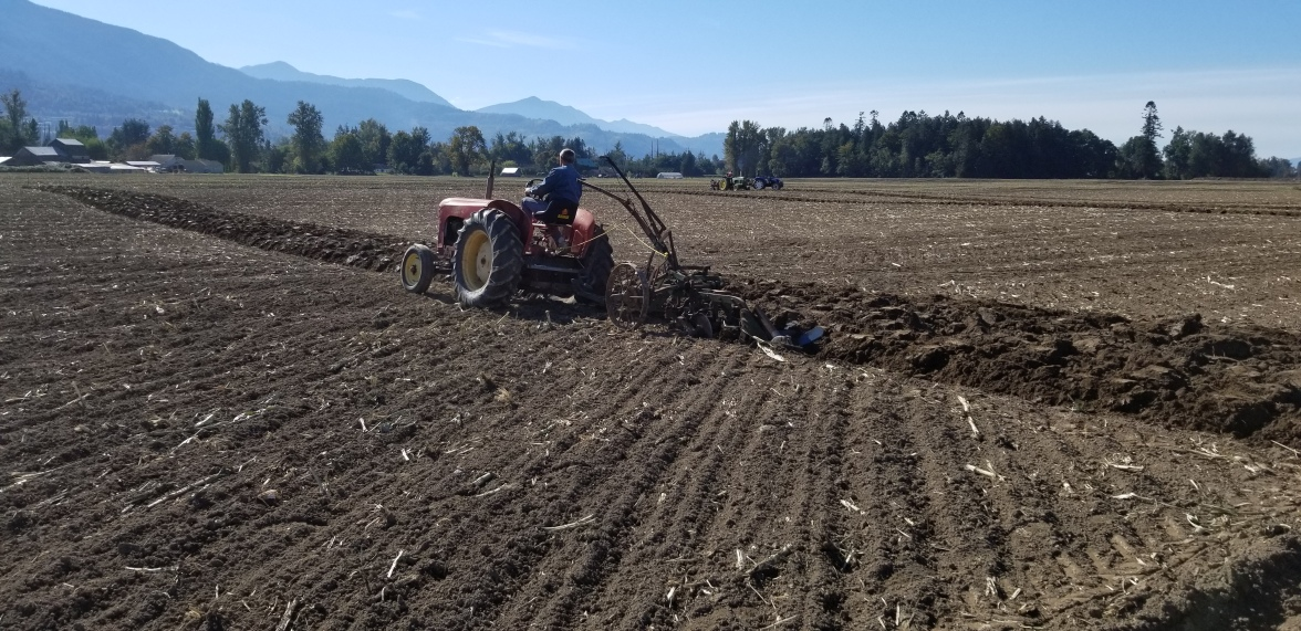 chilliwack plowing match 086