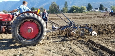 chilliwack plowing match 087
