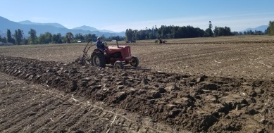 chilliwack plowing match 088
