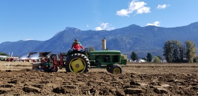 chilliwack plowing match 129